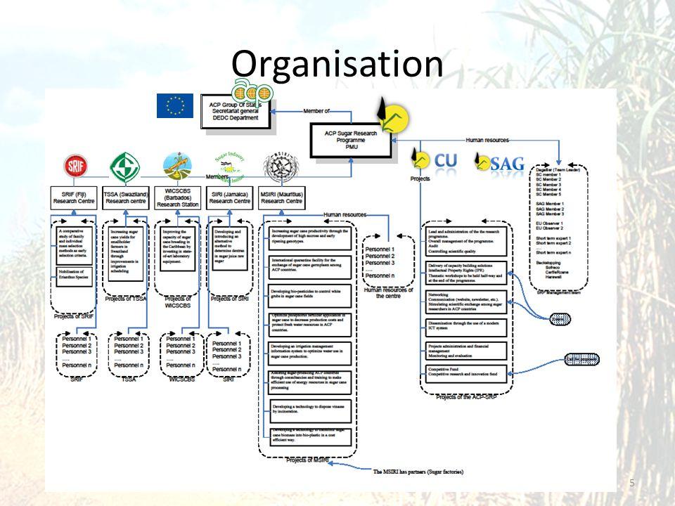 Organisation 5