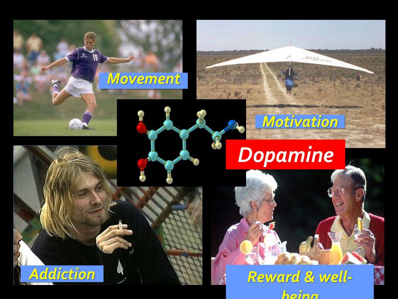 AddictionAddiction Reward & well- being MotivationMotivation MovementMovement Dopamine