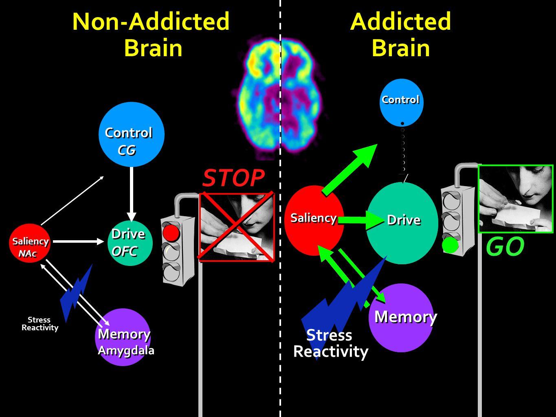 Drive OFC Drive OFC Saliency NAc Saliency NAc Memory Amygdala Memory Amygdala Control CG Control CG Non-Addicted Brain Non-Addicted Brain Addicted Bra