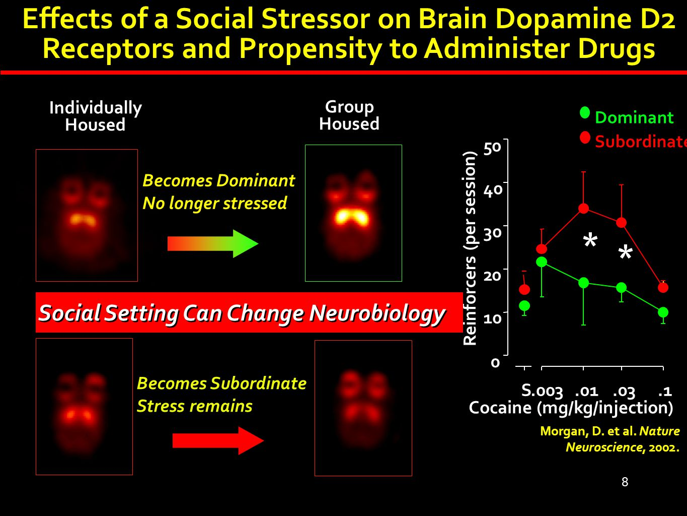 8 Individually Housed Morgan, D. et al. Nature Neuroscience, 2002. * * S.003.01.03.1 0 10 20 30 40 50 Reinforcers (per session) Cocaine (mg/kg/injecti