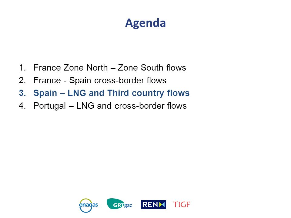 Agenda 1.France Zone North – Zone South flows 2.France - Spain cross-border flows 3.Spain – LNG and Third country flows 4.Portugal – LNG and cross-border flows