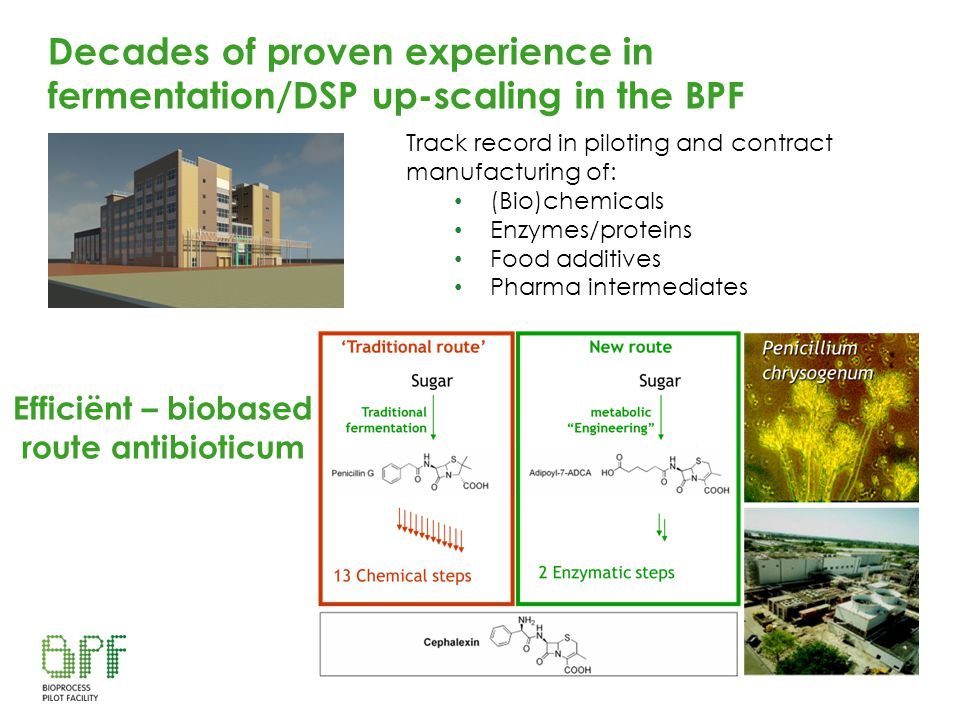 Decades of proven experience in fermentation/DSP up-scaling in the BPF Efficiënt – biobased route antibioticum Track record in piloting and contract m