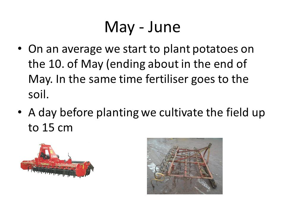 May - June On an average we start to plant potatoes on the 10.