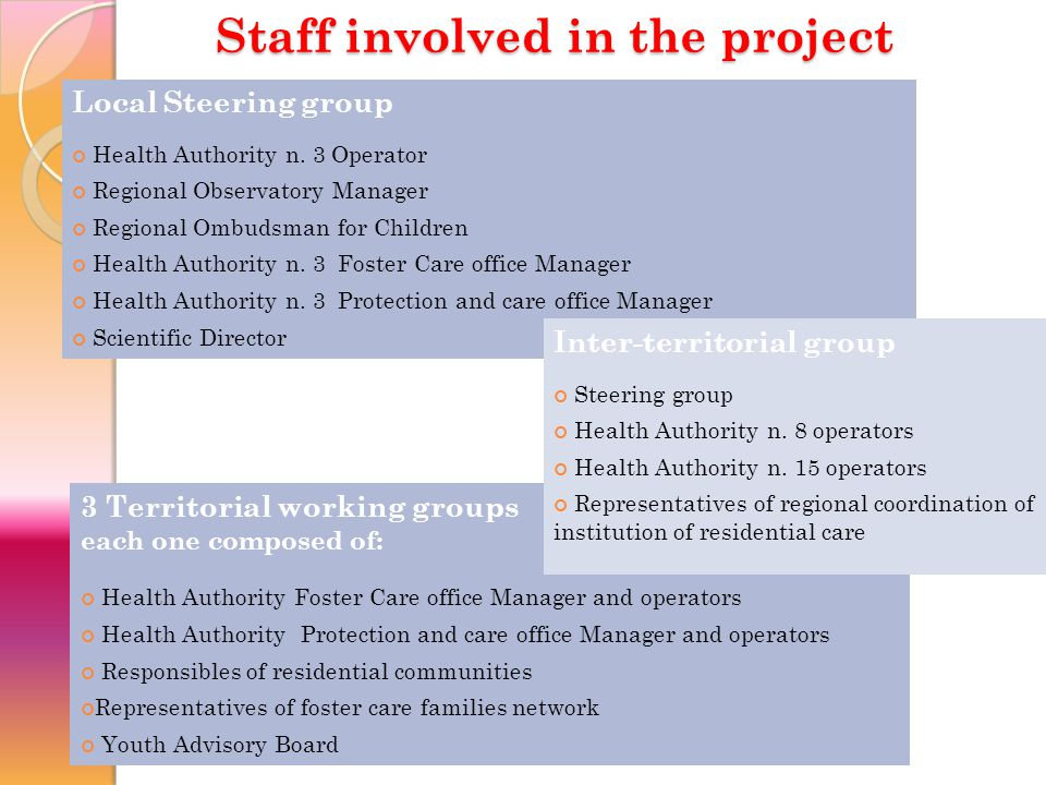 Staff involved in the project Local Steering group Health Authority n.