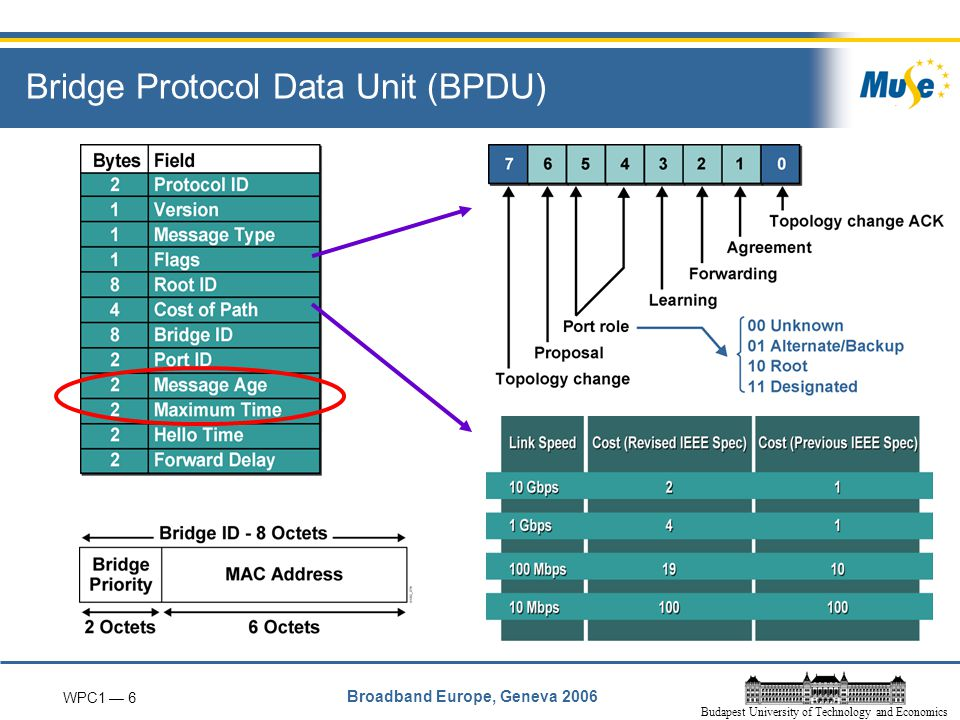 WPC1 — 6 Broadband Europe, Geneva 2006 Budapest University of Technology and Economics Bridge Protocol Data Unit (BPDU)