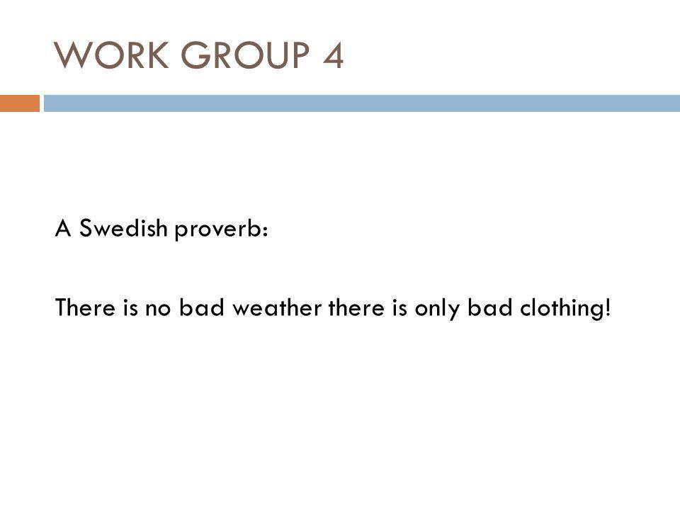 WORK GROUP 4 A Swedish proverb: There is no bad weather there is only bad clothing!