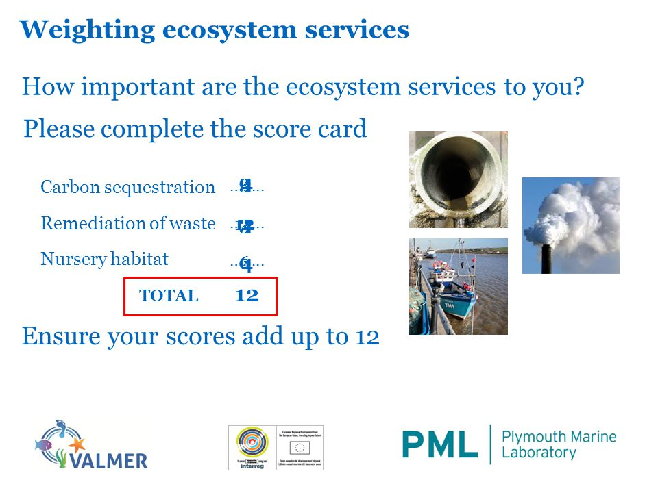 Weighting ecosystem services How important are the ecosystem services to you.
