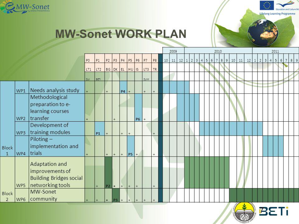 Rodoula Makri WP1 – needs analysis study