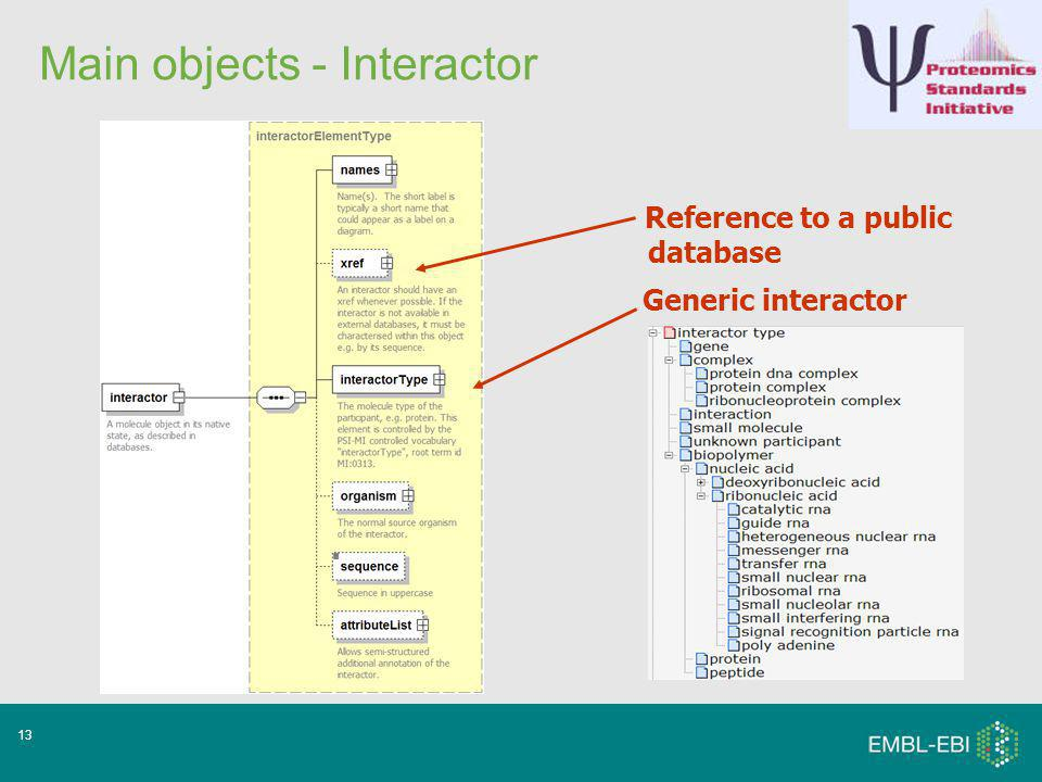 13 Main objects - Interactor Generic interactor Reference to a public database