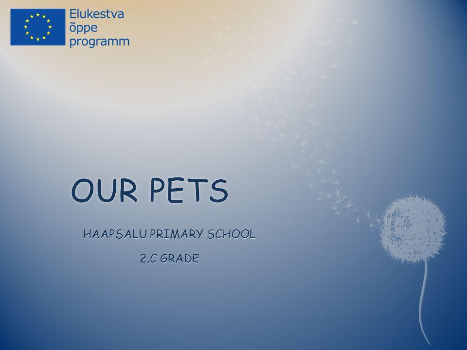 OUR PETSOUR PETS HAAPSALU PRIMARY SCHOOL 2.C GRADE