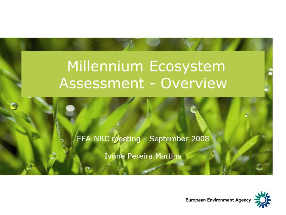 Millennium Ecosystem Assessment - Overview EEA-NRC meeting - September 2008 Ivone Pereira Martins