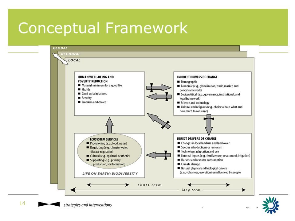 EIONET NRC Nature Biodiversity 200814 Conceptual Framework