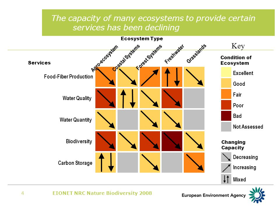 EIONET NRC Nature Biodiversity 20084 The capacity of many ecosystems to provide certain services has been declining Excellent Good Fair Poor Bad Not Assessed Agro-ecosystem Coastal Systems Forest Systems Freshwater Grasslands Food-Fiber Production Water Quality Water Quantity Biodiversity Carbon Storage Increasing Decreasing Mixed Condition of Ecosystem Changing Capacity Key Ecosystem Type Services