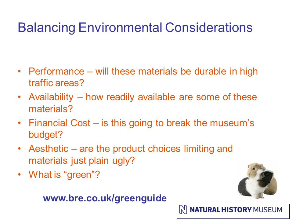 Balancing Environmental Considerations Performance – will these materials be durable in high traffic areas.