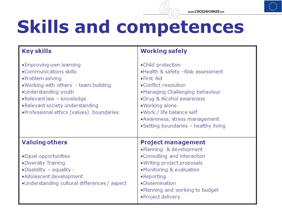 Skills and competences Key skills Improving own learning Communications skills Problem solving Working with others - team building Understanding youth