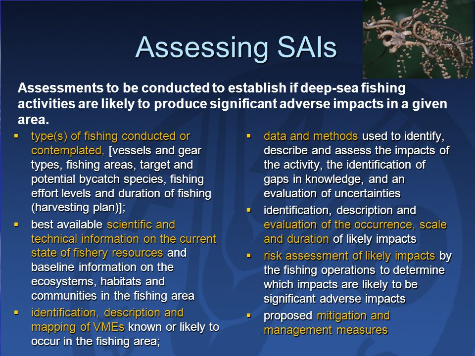 Assessing SAIs  type(s) of fishing conducted or contemplated, [vessels and gear types, fishing areas, target and potential bycatch species, fishing effort levels and duration of fishing (harvesting plan)];  best available scientific and technical information on the current state of fishery resources and baseline information on the ecosystems, habitats and communities in the fishing area  identification, description and mapping of VMEs known or likely to occur in the fishing area;  data and methods used to identify, describe and assess the impacts of the activity, the identification of gaps in knowledge, and an evaluation of uncertainties  identification, description and evaluation of the occurrence, scale and duration of likely impacts  risk assessment of likely impacts by the fishing operations to determine which impacts are likely to be significant adverse impacts  proposed mitigation and management measures Assessments to be conducted to establish if deep-sea fishing activities are likely to produce significant adverse impacts in a given area.