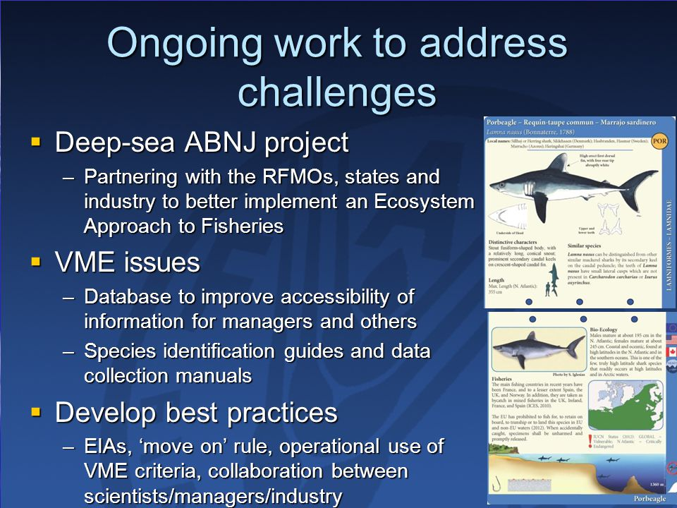 Ongoing work to address challenges  Deep-sea ABNJ project –Partnering with the RFMOs, states and industry to better implement an Ecosystem Approach to Fisheries  VME issues –Database to improve accessibility of information for managers and others –Species identification guides and data collection manuals  Develop best practices –EIAs, 'move on' rule, operational use of VME criteria, collaboration between scientists/managers/industry