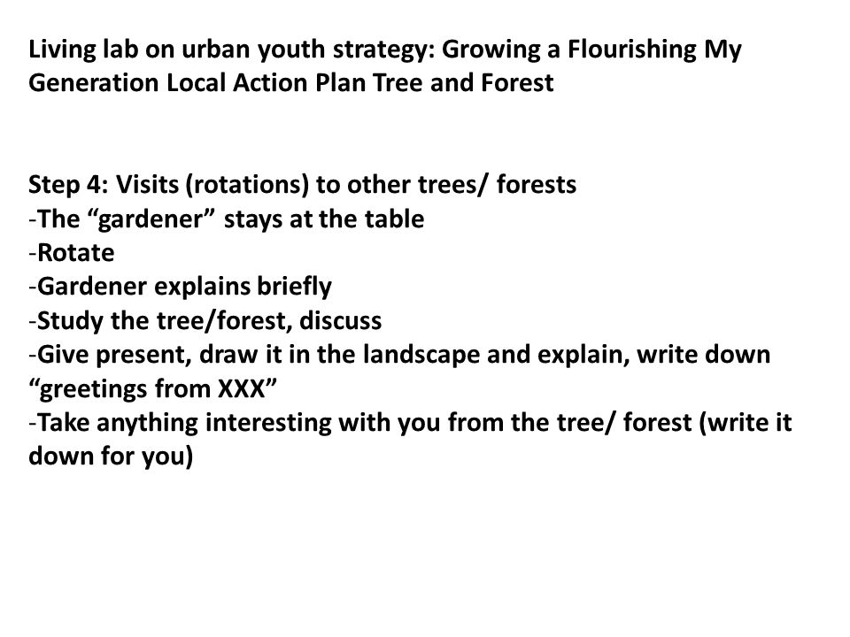 Living lab on urban youth strategy: Growing a Flourishing My Generation Local Action Plan Tree and Forest Step 5: Return to own tree/ forest -Add everything you discovered on your trip to your tree/forest