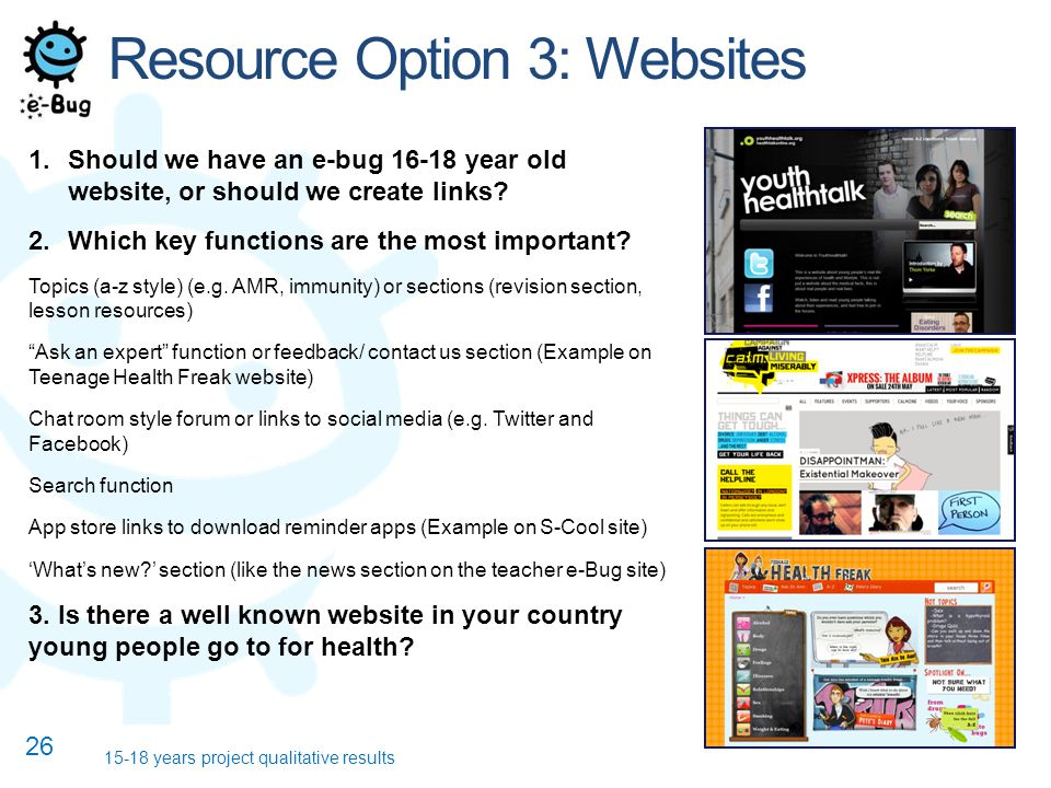 Resource Option 3: Websites 1.Should we have an e-bug year old website, or should we create links.