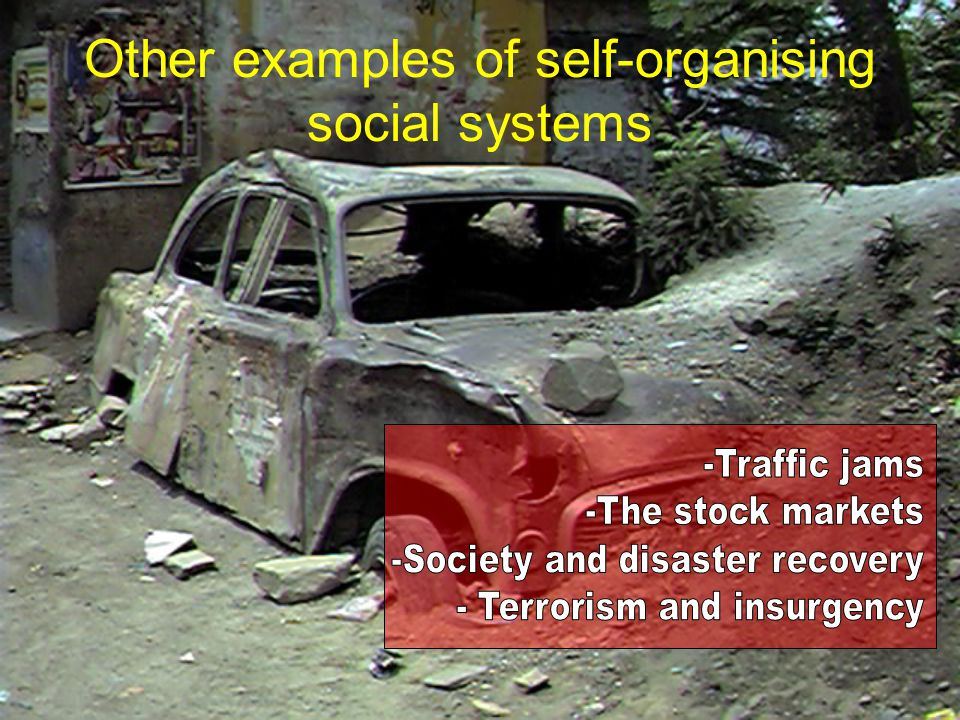 Other examples of self-organising social systems