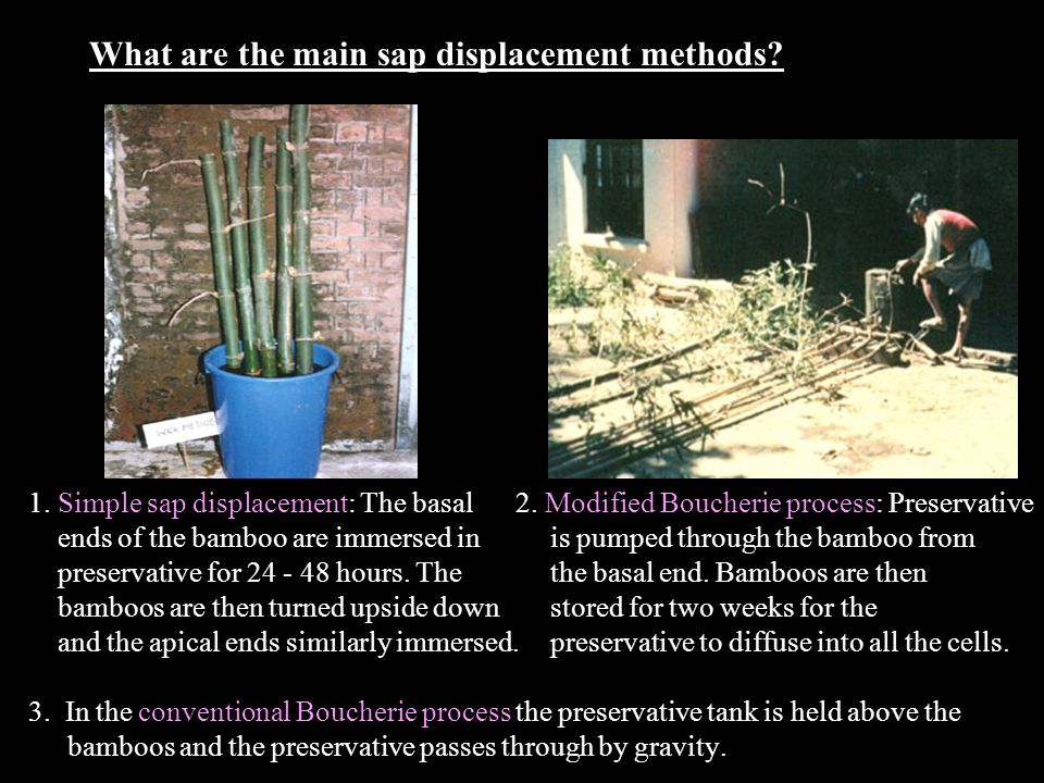 What are the main sap displacement methods. 1. Simple sap displacement: The basal 2.