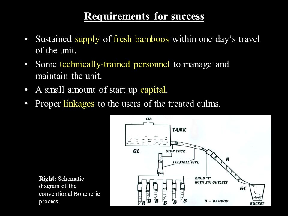 Requirements for success Sustained supply of fresh bamboos within one day's travel of the unit. Some technically-trained personnel to manage and maint