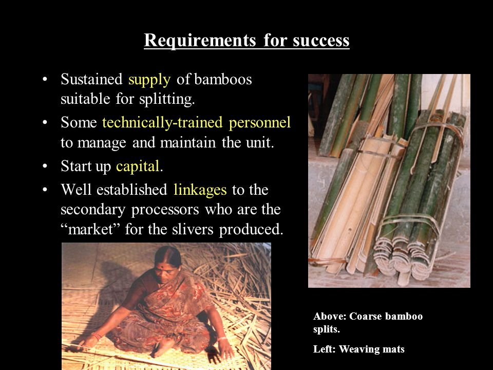 Requirements for success Sustained supply of bamboos suitable for splitting.