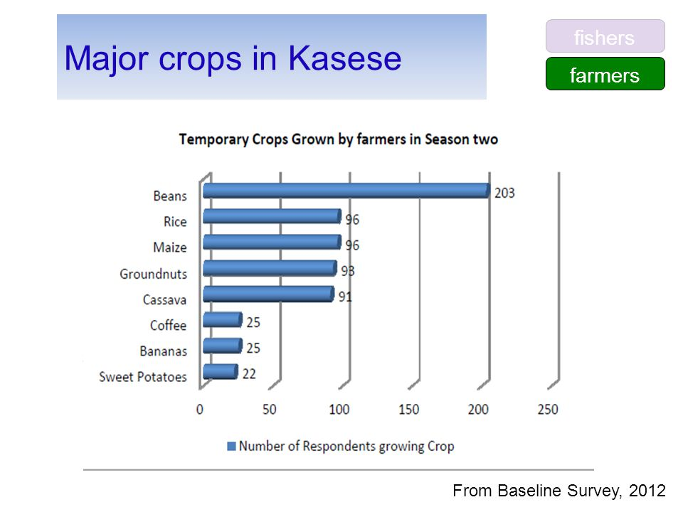 Major crops in Kasese From Baseline Survey, 2012 farmers fishers