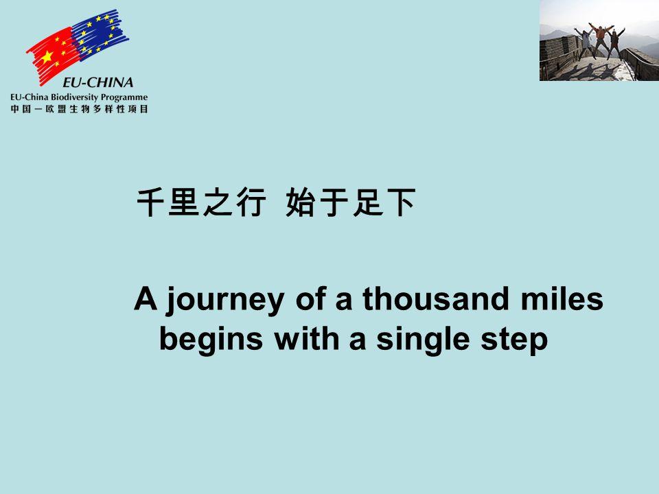 千里之行 始于足下 A journey of a thousand miles begins with a single step