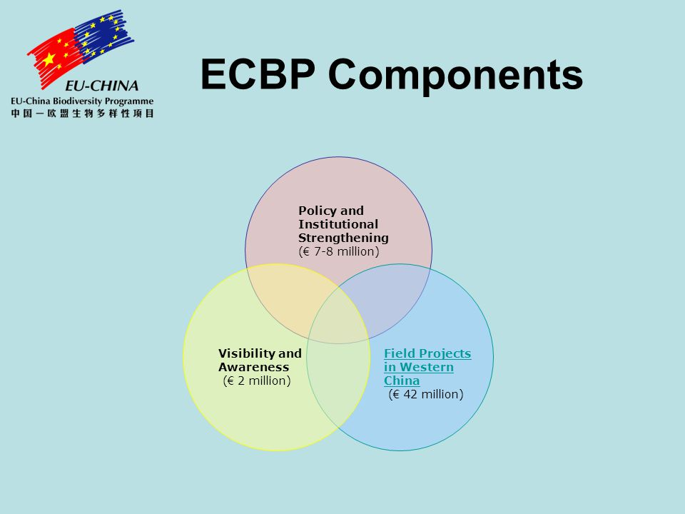 ECBP Components Policy and Institutional Strengthening ( € 7-8 million) Field Projects in Western China ( € 42 million) Visibility and Awareness ( € 2