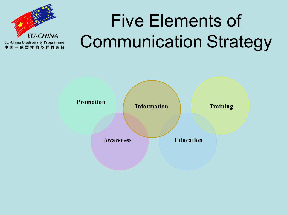 Five Elements of Communication Strategy Promotion InformationTraining AwarenessEducation
