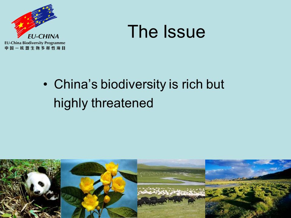 The Issue Laws, measures, investments and attitudes for its protection are inadequate A major cause is the widespread lack of awareness of biodiversities value and importance in China's socio-economic development