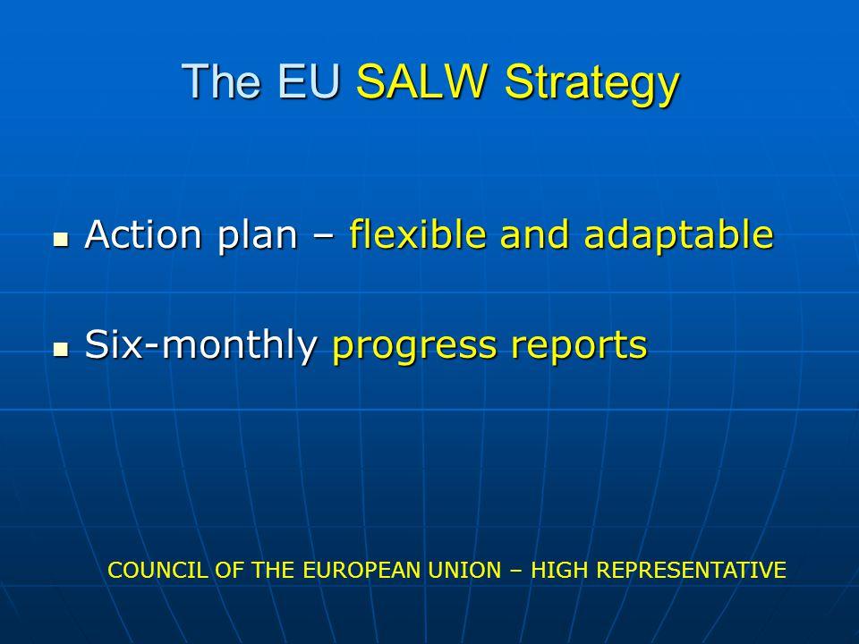 The EU SALW Strategy Action plan – flexible and adaptable Action plan – flexible and adaptable Six-monthly progress reports Six-monthly progress reports COUNCIL OF THE EUROPEAN UNION – HIGH REPRESENTATIVE