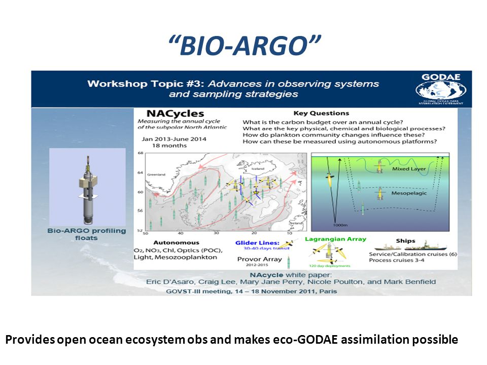 BIO-ARGO Provides open ocean ecosystem obs and makes eco-GODAE assimilation possible