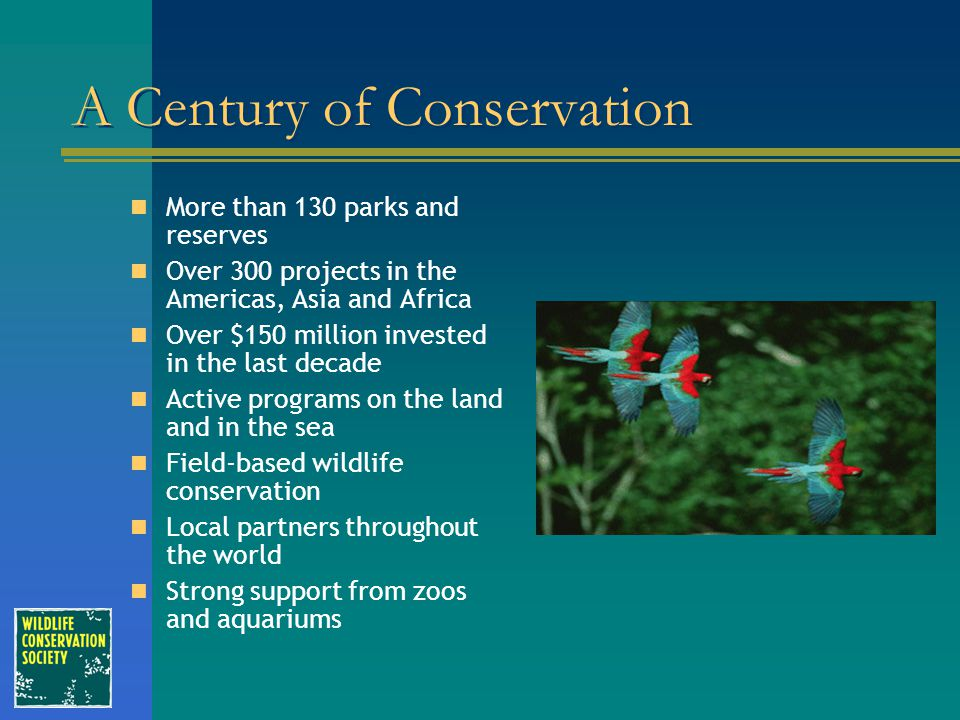 A Century of Conservation More than 130 parks and reserves Over 300 projects in the Americas, Asia and Africa Over $150 million invested in the last d