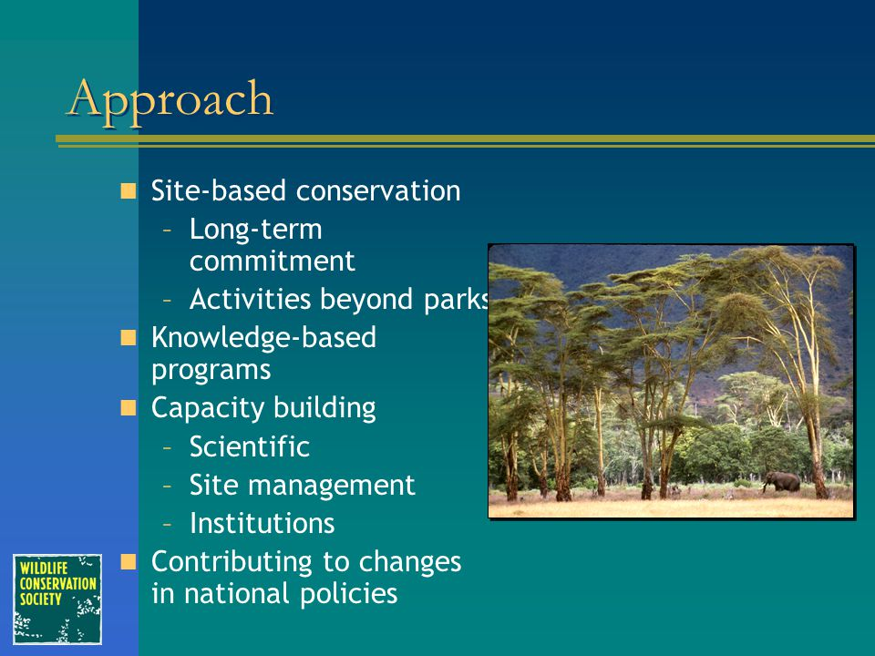Approach Site-based conservation –Long-term commitment –Activities beyond parks Knowledge-based programs Capacity building –Scientific –Site managemen