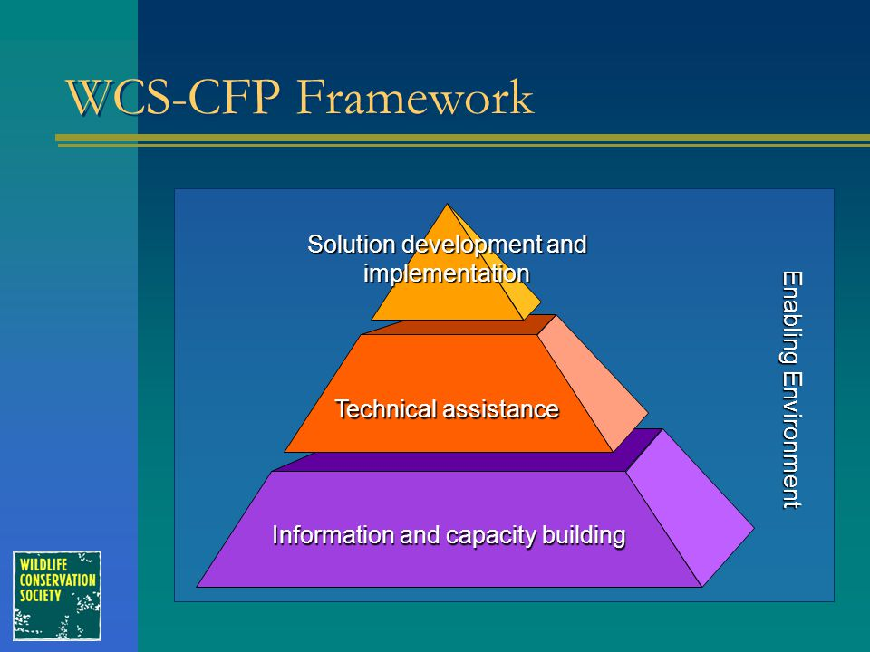 Enabling Environment WCS-CFP Framework Information and capacity building Technical assistance Solution development and implementation
