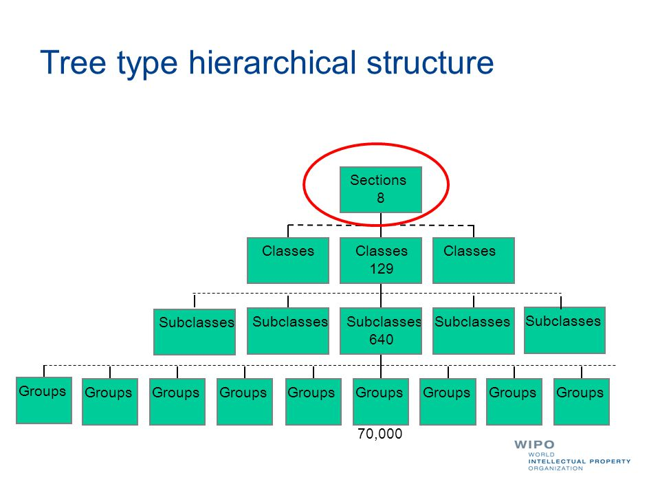 Tree type hierarchical structure Classes Subclasses Groups 70,000 Groups Subclasses 640 Subclasses Classes 129 Classes Sections 8 Subclasses Groups