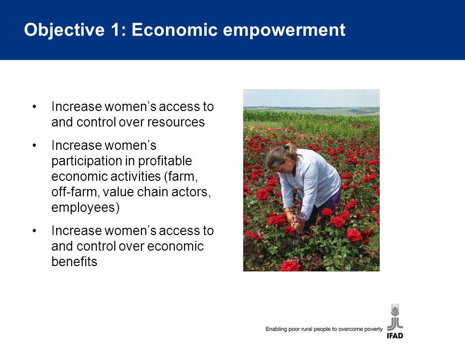 Objective 1: Economic empowerment Increase women's access to and control over resources Increase women's participation in profitable economic activiti