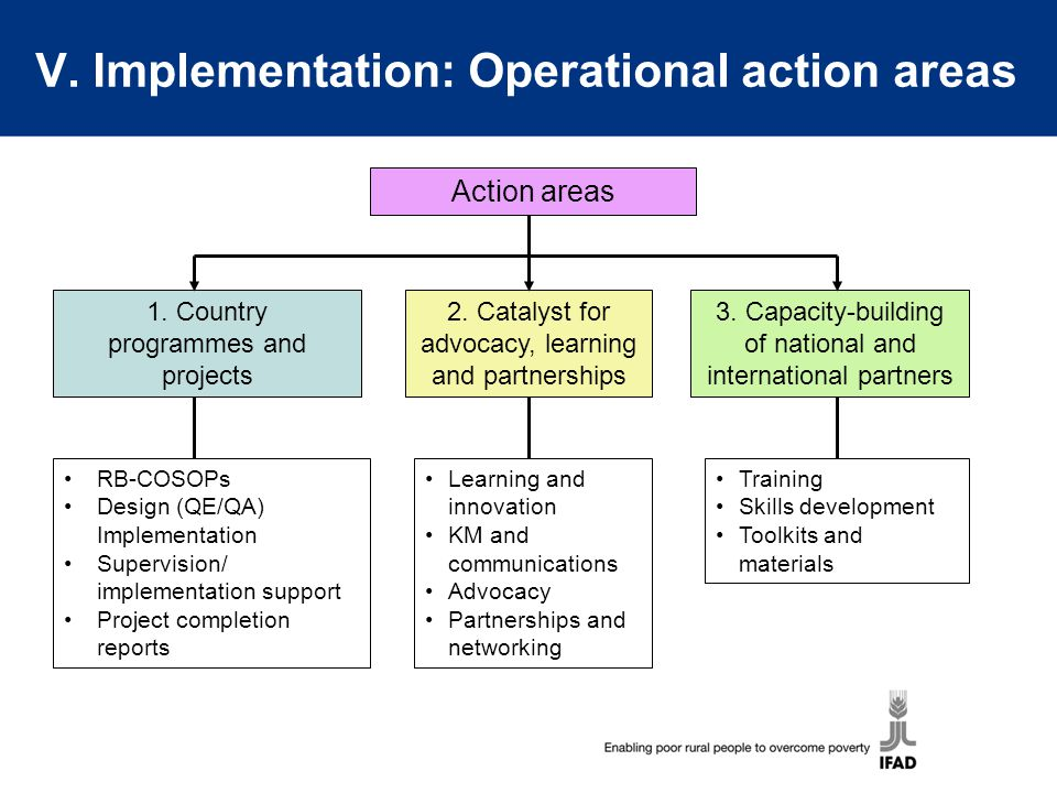 V. Implementation: Operational action areas 1. Country programmes and projects 2. Catalyst for advocacy, learning and partnerships 3. Capacity-buildin