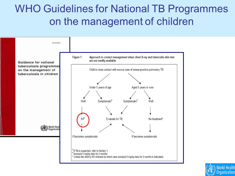 WHO Guidelines for National TB Programmes on the management of children