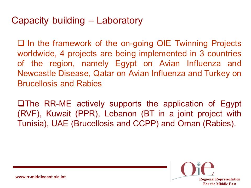 Capacity building – Laboratory Regional Representation For the Middle East www.rr-middleeast.oie.int  In the framework of the on-going OIE Twinning P