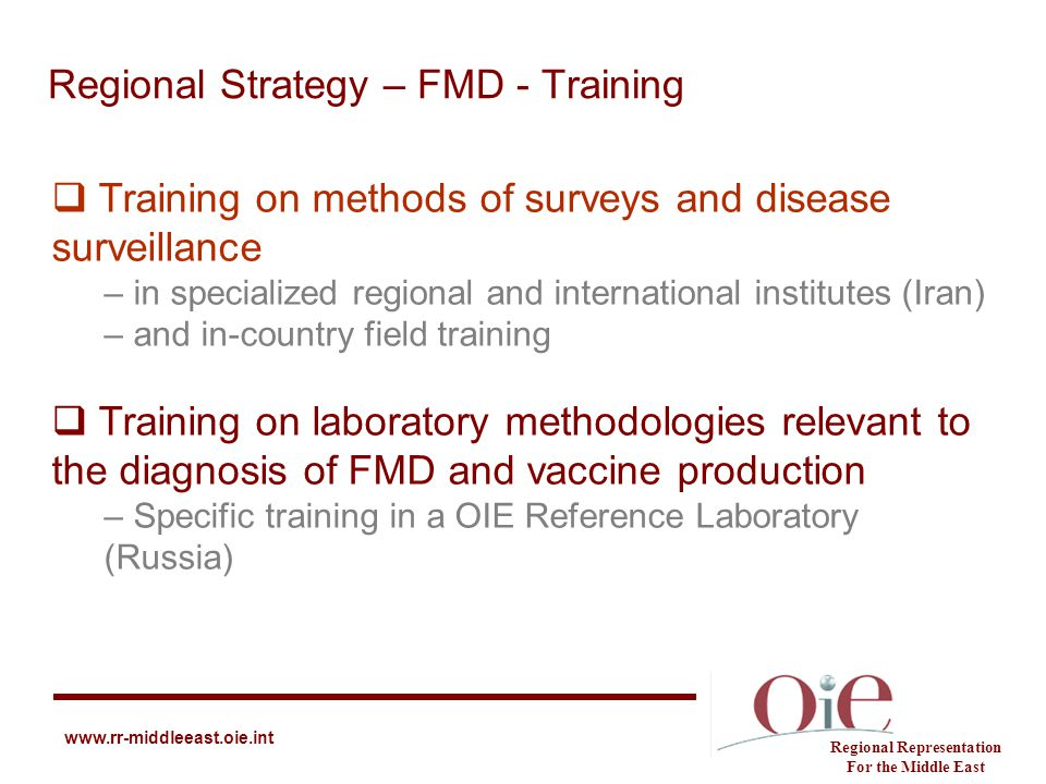 Regional Strategy – FMD - Training Regional Representation For the Middle East www.rr-middleeast.oie.int  Training on methods of surveys and disease