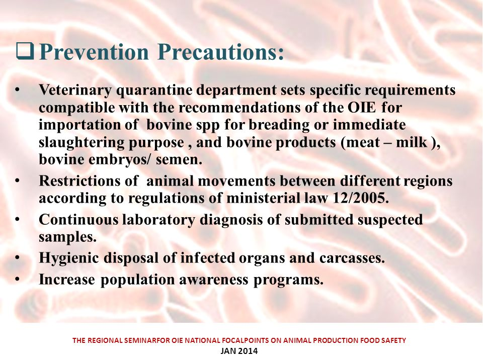 THE REGIONAL SEMINARFOR OIE NATIONAL FOCALPOINTS ON ANIMAL PRODUCTION FOOD SAFETY JAN 2014  Prevention Precautions: Veterinary quarantine department sets specific requirements compatible with the recommendations of the OIE for importation of bovine spp for breading or immediate slaughtering purpose, and bovine products (meat – milk ), bovine embryos/ semen.