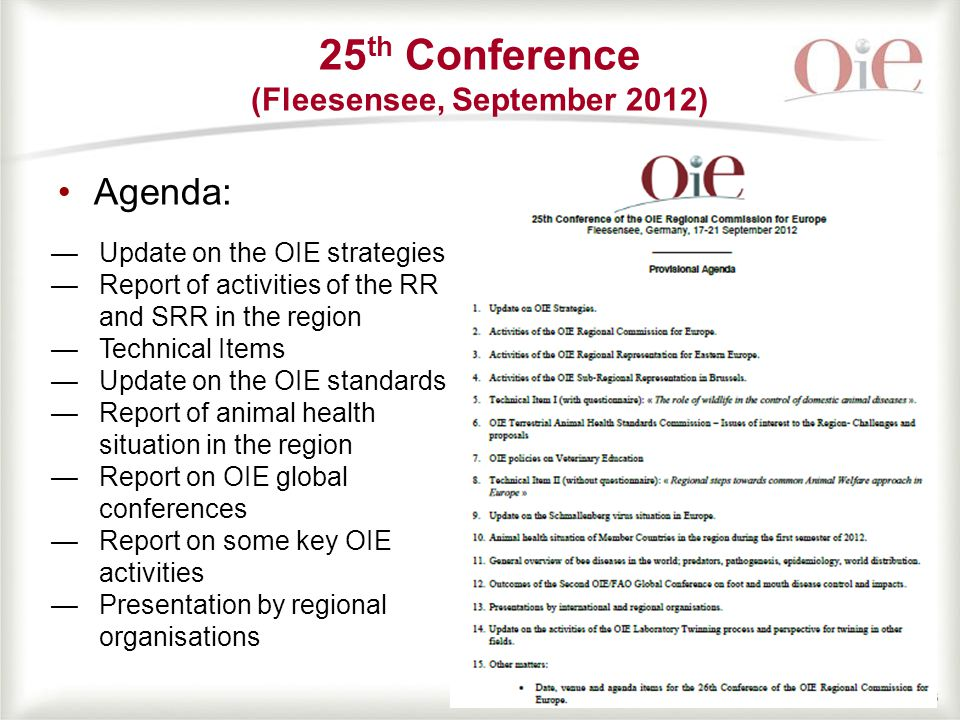 66 Agenda: 25 th Conference (Fleesensee, September 2012) —Update on the OIE strategies —Report of activities of the RR and SRR in the region —Technical Items —Update on the OIE standards —Report of animal health situation in the region —Report on OIE global conferences —Report on some key OIE activities —Presentation by regional organisations