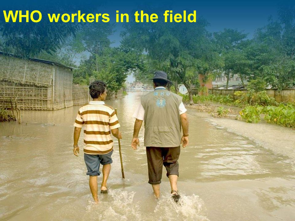 WHO workers in the field