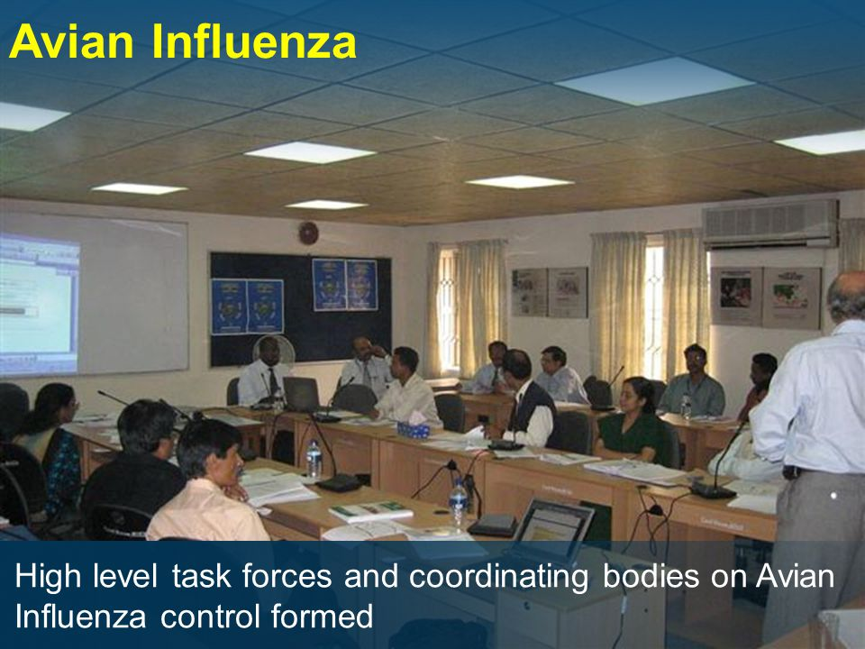 Avian Influenza High level task forces and coordinating bodies on Avian Influenza control formed