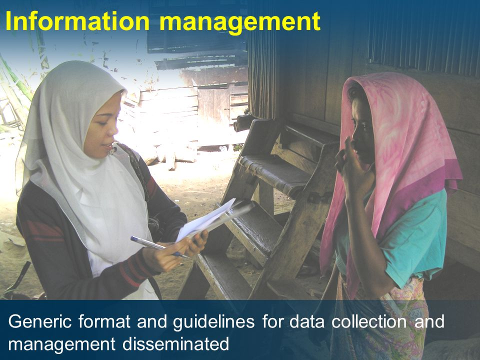 Information management Generic format and guidelines for data collection and management disseminated