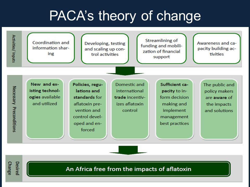 PACA's theory of change