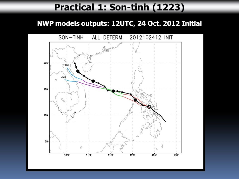 NWP models outputs: 12UTC, 24 Oct. 2012 Initial Practical 1: Son-tinh (1223)